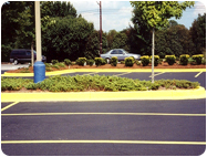 Yellow Curb and Parking Lot Paint.