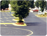 Custom Yellow Parking Lot Curb Paint.